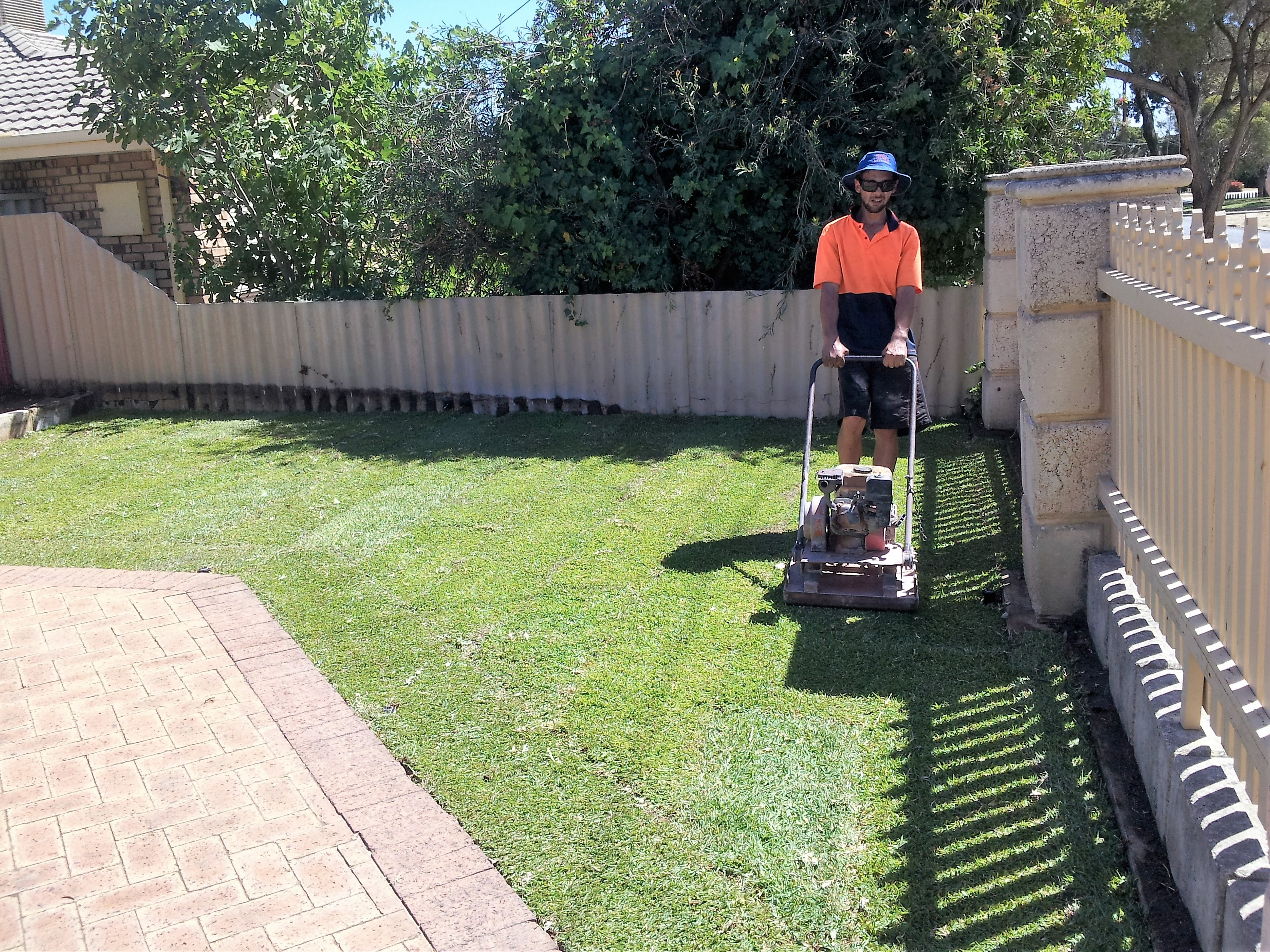 Team Boost compacting newly installed Sir Walter Buffalo lawn